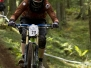 DH Cup Rold, 2013